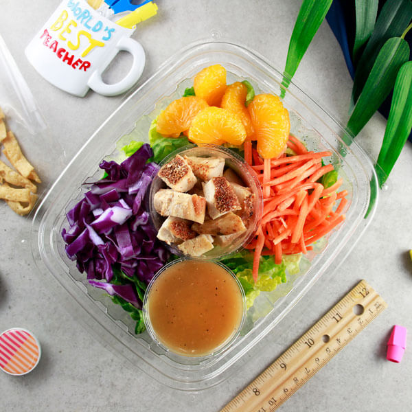 Chinese Chicken Salad with Wonton Strips